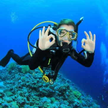 Zero to Hero Package  (Open Water – Divemaster)