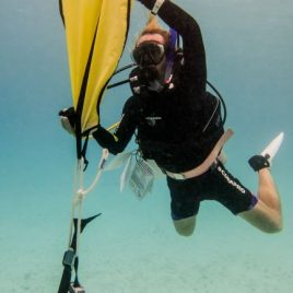 PADI Specialty Instructor Course