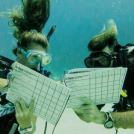 PADI Instructor Gold Package (IDC/EFRI-MSDT-IDC Staff Instructor)